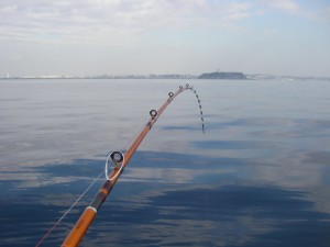rod fishing stock research