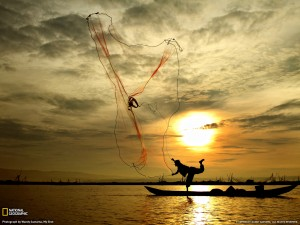 stock research net fishing